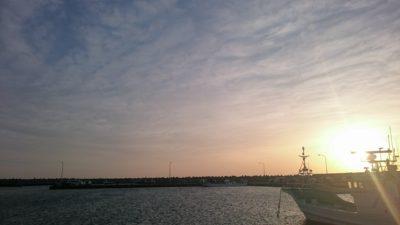 漁港の様子