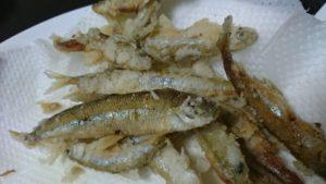 公魚の天婦羅
