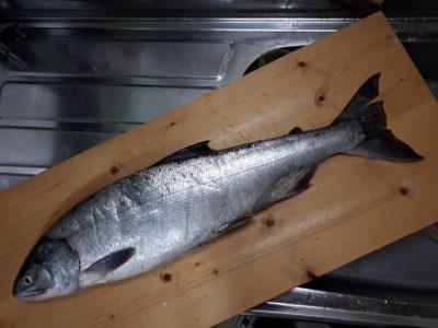 まな板の上の鮭